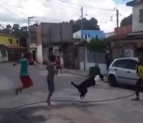 A dog jumps rope with a few children on the street.