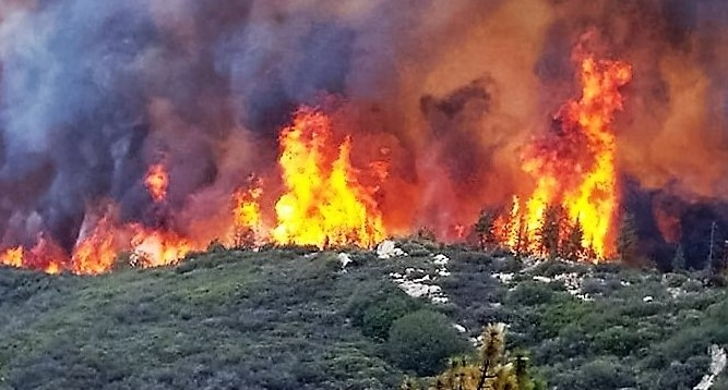 Mineral Fire grows to 7000 acres, is 15% contained