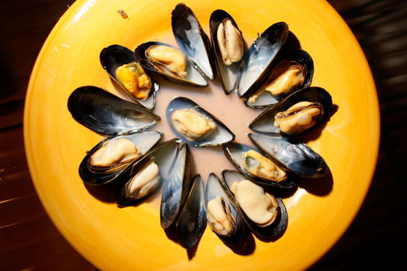 Prince Edward Island Mussels Harvested For U.S. Consumption