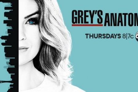 'Grey's Anatomy' Season 13