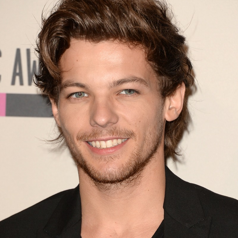 Louis Tomlinson Arrested Following Airport Brawl