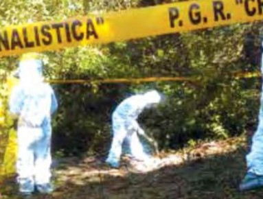 Over 1,000 Undisclosed Graves Have Been Found in Mexico Since 2009