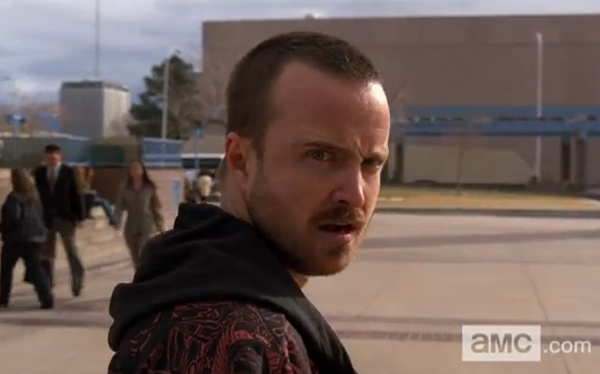 Breaking Bad 'Rabid Dog'