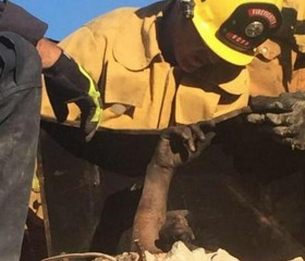 Venture County firefighters free woman stuck in chimney