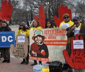 immigration deportation ICE protests