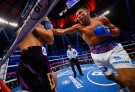 Gennady Golovkin next fight - Dominic Wade