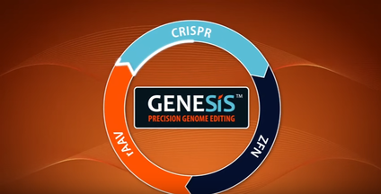 CRISPR Genome Editing - Horizon Discovery