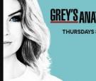 'Grey's Anatomy' Season 13