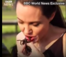 Angelina Jolie Cook and Eat Spiders and Scorpions With Her Kids
