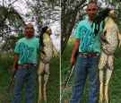Viral Image of Giant Bullfrog 'Frogzilla'