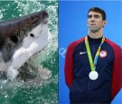 Michael Phelps fears nothing in the water.